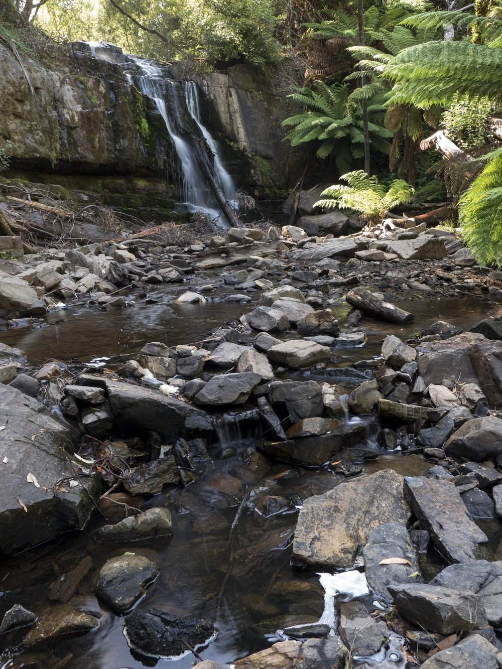 Taken recently as an example at a workshop, this image uses a slightly tilted camera to add DOF. The focus point was the clump of rocks in the foreground with an aperture of f6.3 and the shutter speed roughly 1.5 seconds. Without tilting, the DOF would have only allowed focus from the foreground to half way up the stream or the waterfall only with a soft foreground. The catch with tilting is that anything in the top of the frame that is near to you will be out of focus.  This image would have been better balanced with wet rocks less wind and less sunlight, but time was poor.