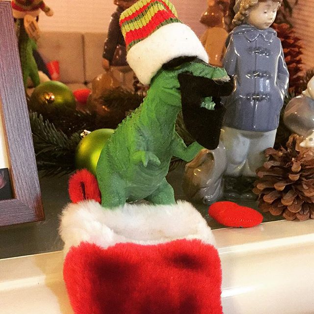 #Theodore #wishes everyone a #Merry Grrrwaaarmas and a late #festivus to all... Or whatever #celebration your desired #denomination dictates.