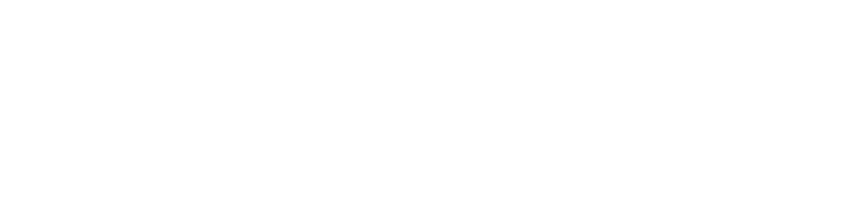 Anatomy of Arts | Pro Series