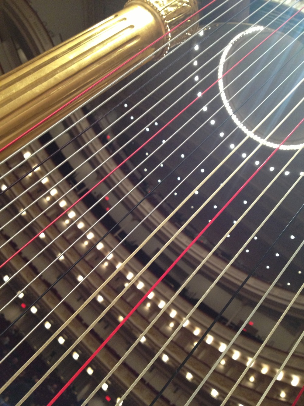 Harp strings - there are 47 of them!