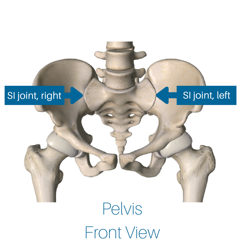 Mastering The Basics This Is How Your Si Joint Works Brad Waites