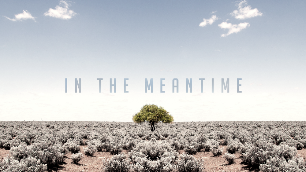 In-The-MeantimeIn-The-Meantime---Message-Graphic copy.png