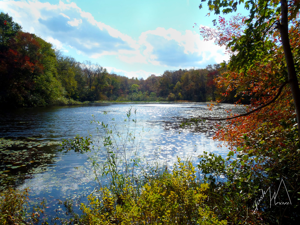 S Lake.jpg