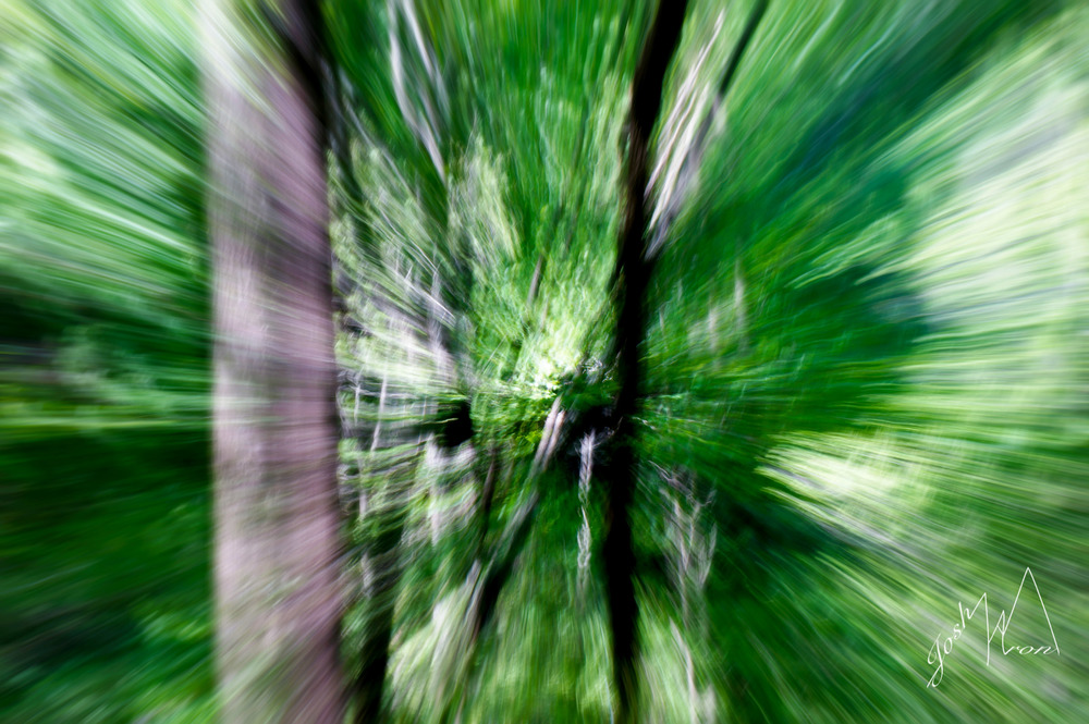 AB zoom.jpg
