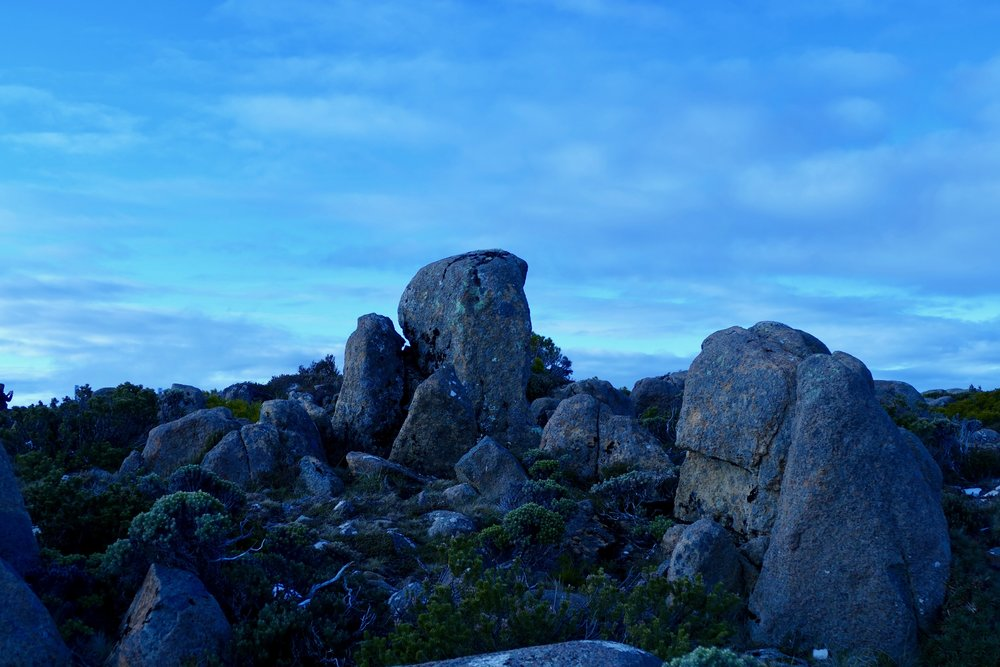 Mt Wellington, Tasmania. July 2017.