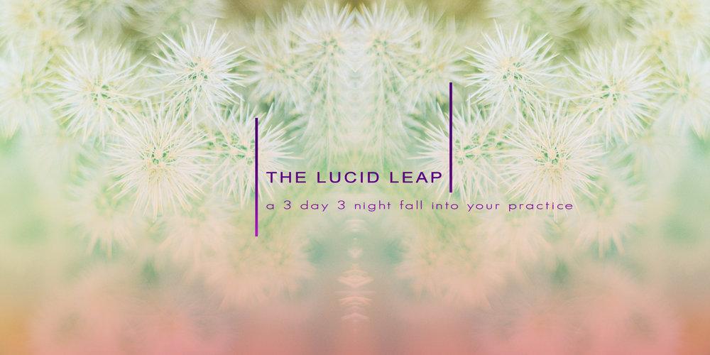 thelucidleapbanner.jpg