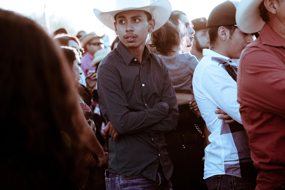 Rodeo   Diana Mantis