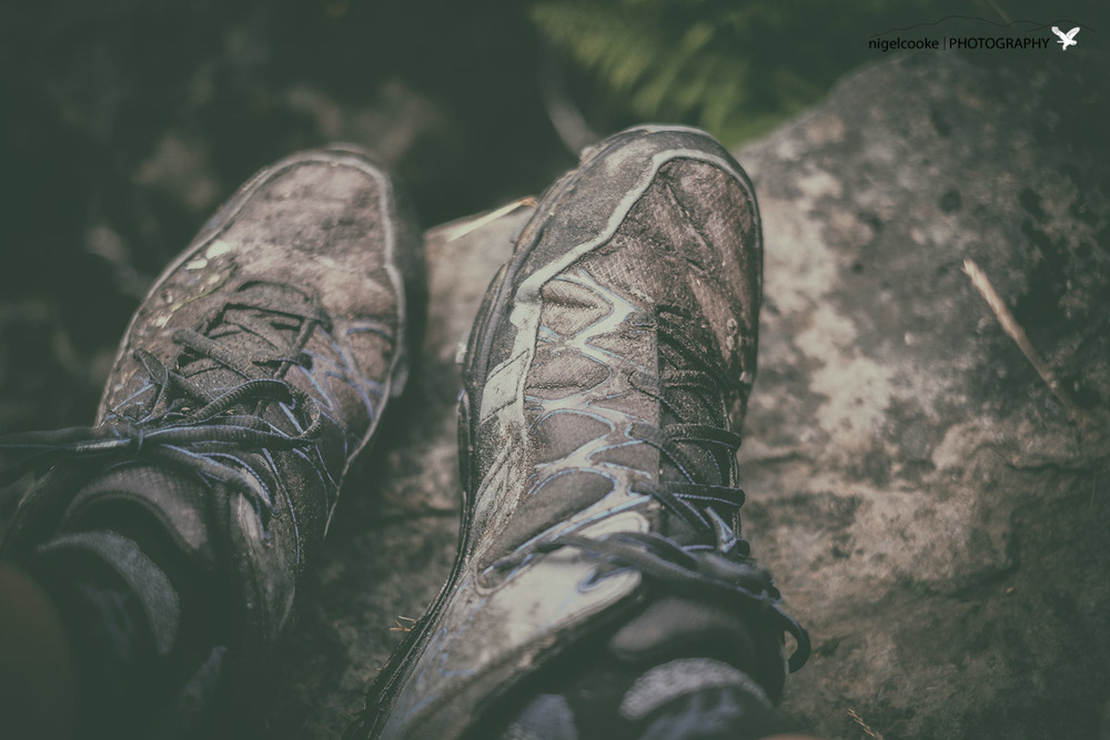 Mud on your trail shoes .. how it should be