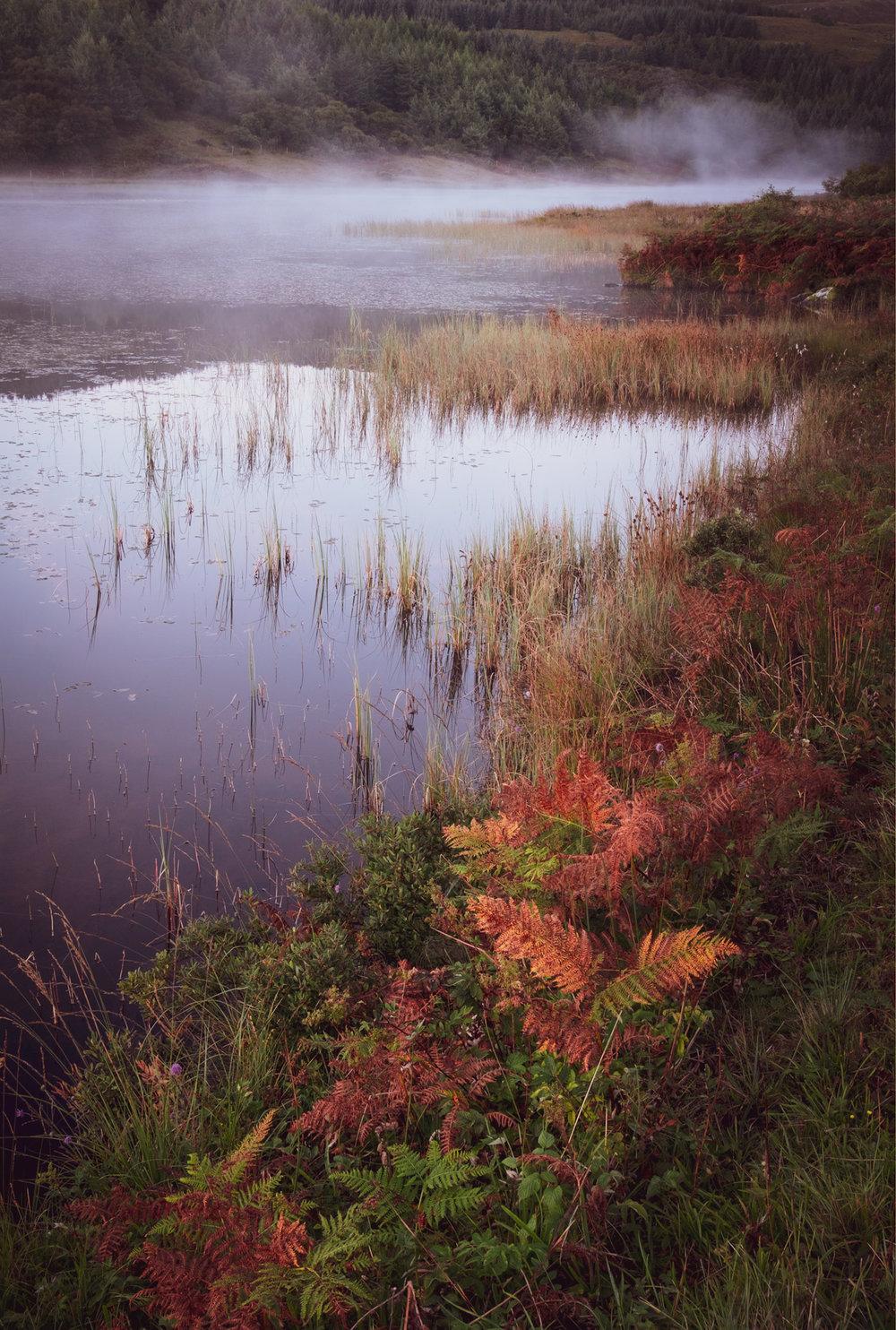 NigelCookePhotography_NorthernIreland-98.jpg