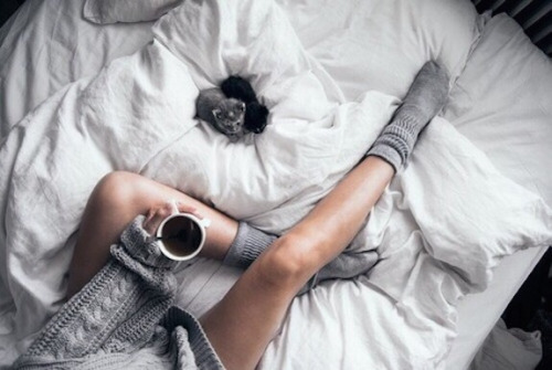 white bed, grey knits, black coffee, kitten