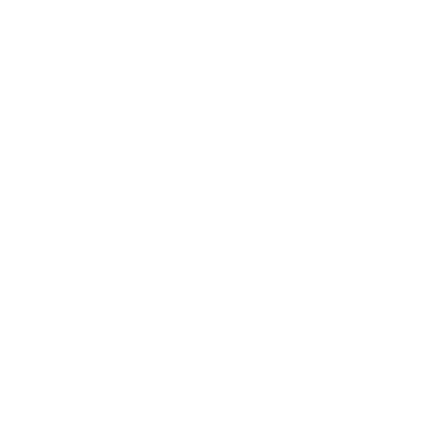 LYFE Athletics / Team CrossFit