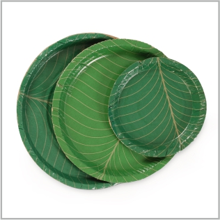 BOLLANT FULFILLS ITS MISSION THROUGH ECO-FRIENDLY DISPOSABLE CONSUMER PRODUCTS AND PACKAGING INDUSTRY. & Leaf u2014 Custom Products: Areca Biodegradable Corrugated Disposable ...