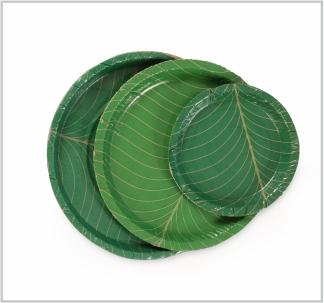 leaf plates & Paper \u2014 Custom Products: Areca Biodegradable Corrugated ...