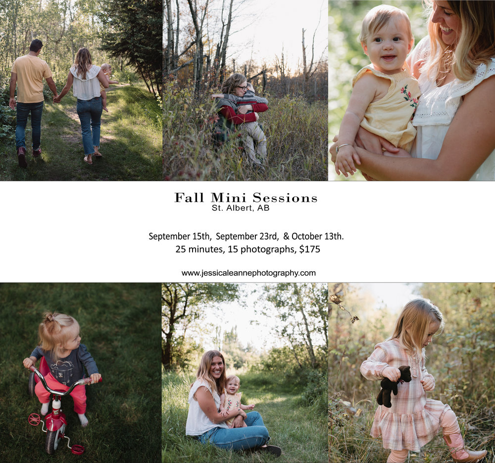 fall mini sessions, st. albert, alberta, family photographer