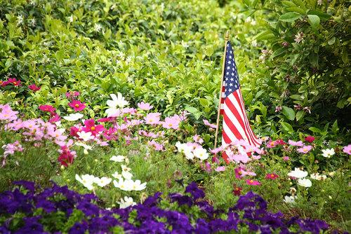 2013-06-08-AFD-Flag-Day-258.jpg
