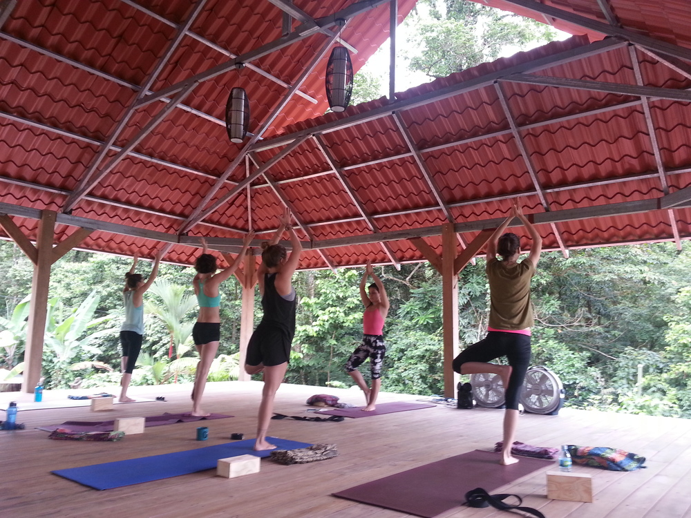 #yoga #yogateachertraining #JaiYogaJourneys #CostaRica #yogaalliance #yogaeverydamnday #becomeayogateacher