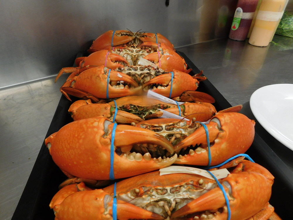 crabs 003.JPG