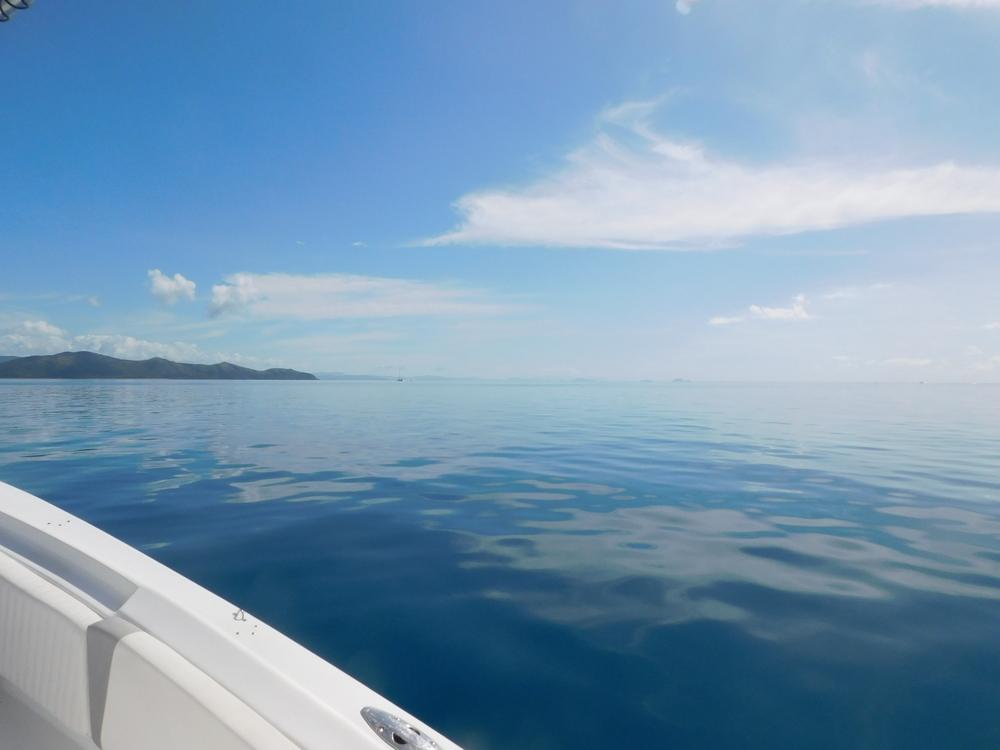 reef day 014.JPG