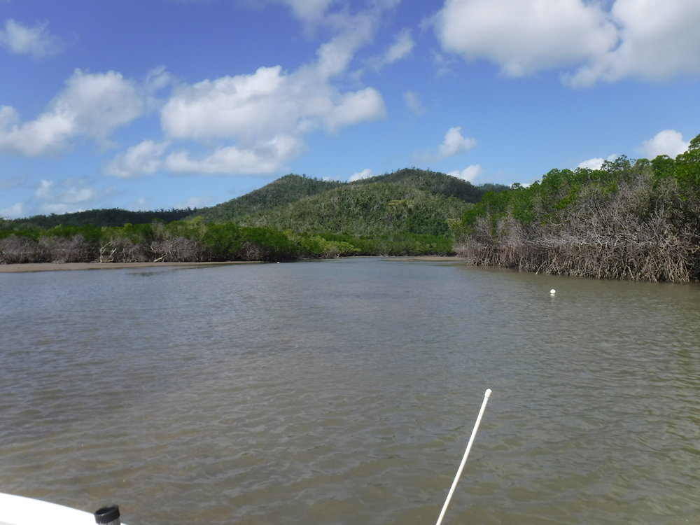 One of the great little crabbing creeks in the south western corner of Tongue bay. have a google earh look.