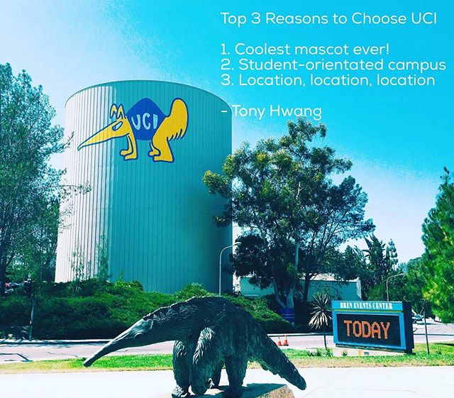 There are many reasons to choose UC Irvine. What are your top reasons for choosing UCI? #ucirvine #college #anteater #mascot # location #studentinvolvement #campuslove