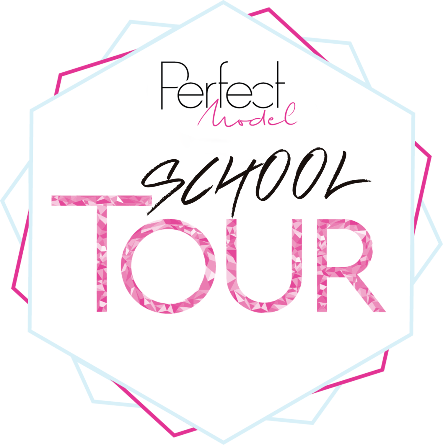 PERFECT MODEL SCHOOL TOUR