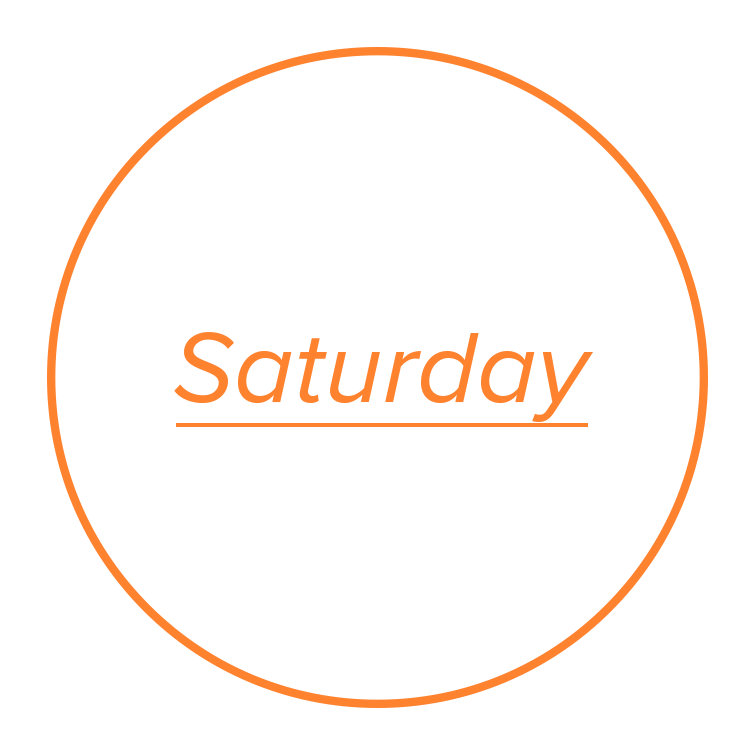 Sat-icon.png