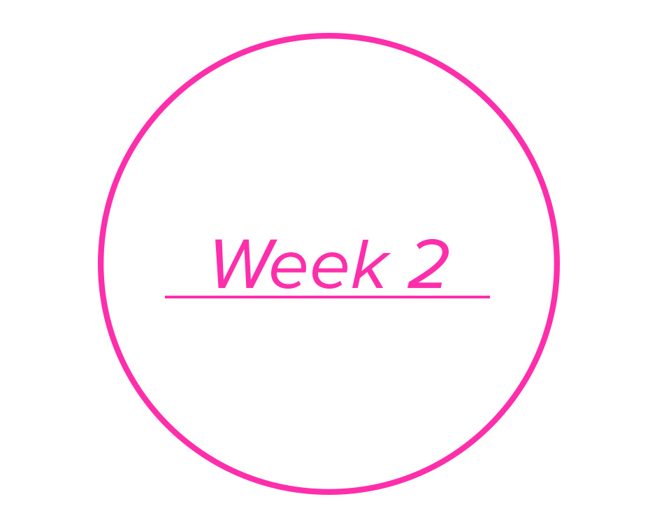 Week2 copy copy.jpg