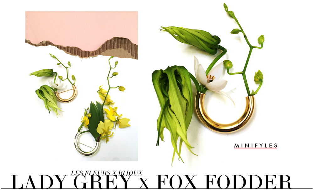 Lady Grey x Fox Fodder Farm