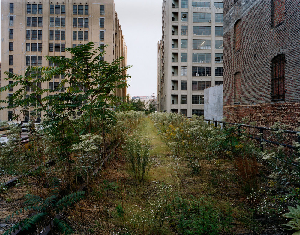 Walking the High Line, Looking South at the 27th Street , September 2000, Joel Sternfeld. Courtesy of the artist.