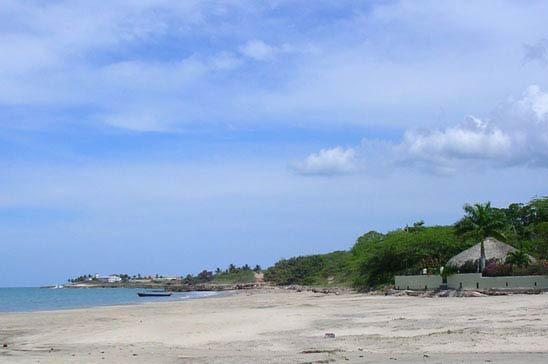 alices_cottage_treasure_beach12.jpg