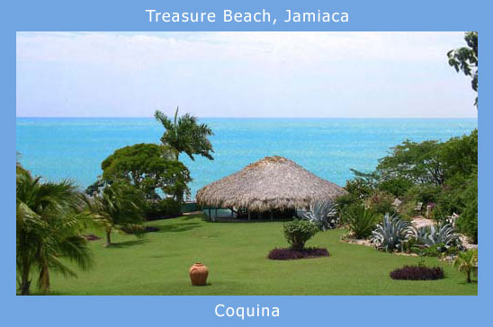 treasure_beach_jamaica_coquina.jpg