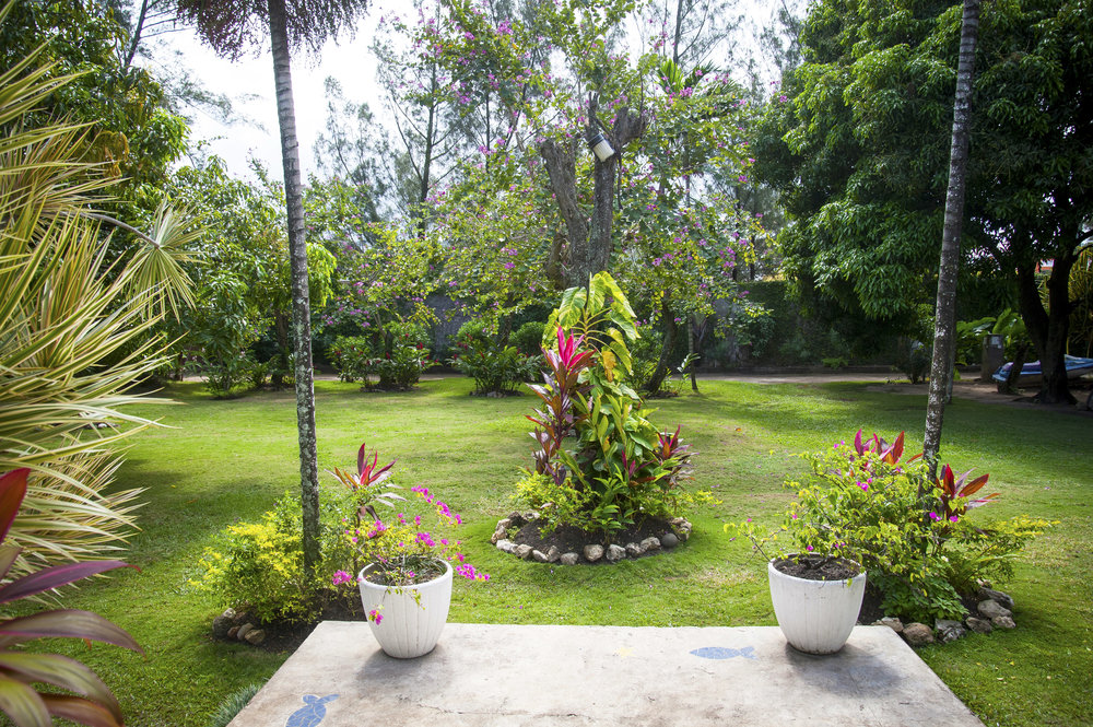 Bahia_Runaway_Bay_Jamaica26.jpg