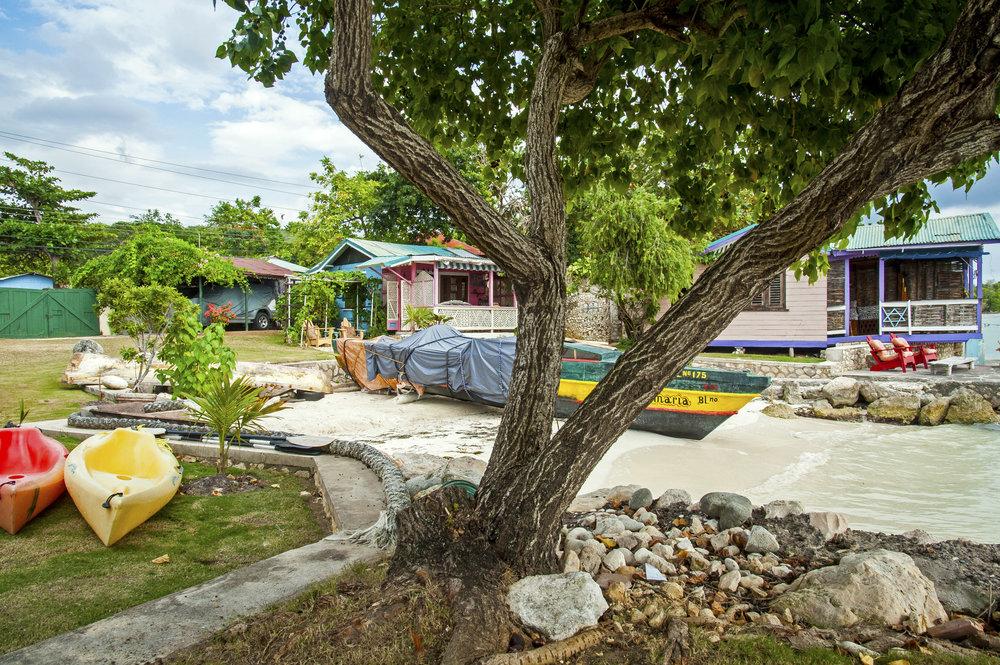 Horizon_Landscape_Bluefileds_Jamaica20.jpg