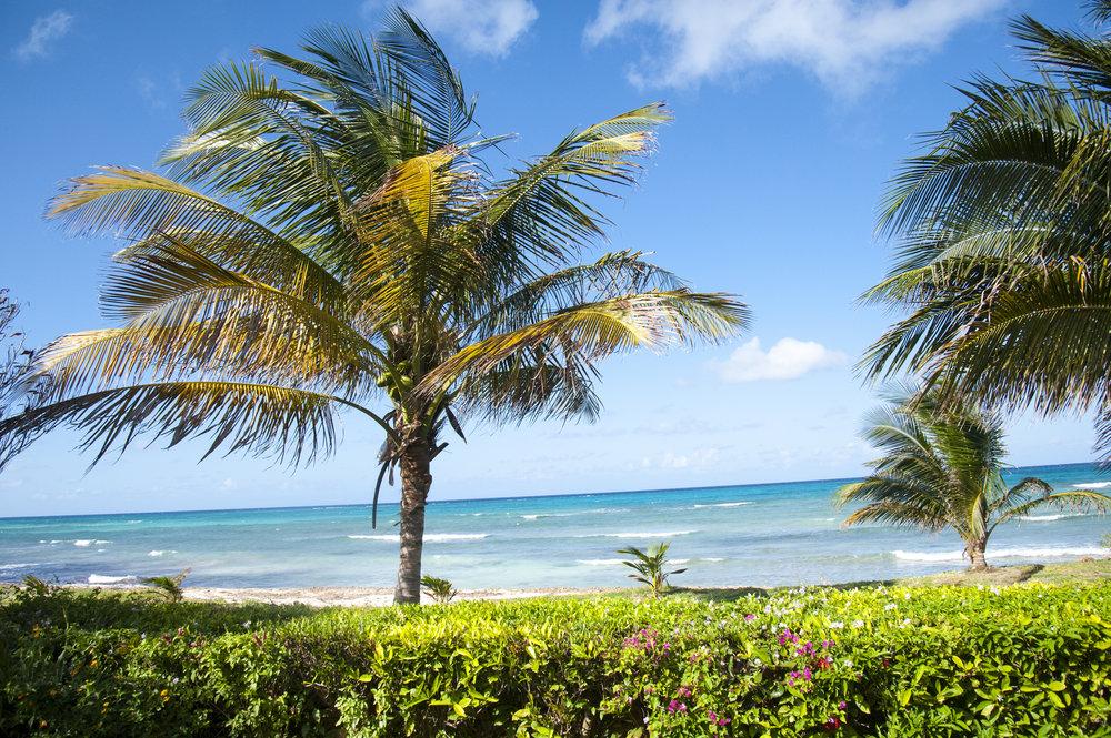 Ebb Tide_SilverSands_Jamaica_04.jpg