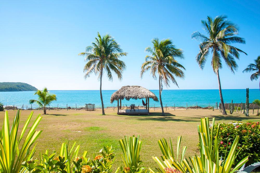 Driftwood_Treasure_Beach_Jamaica_01.jpg
