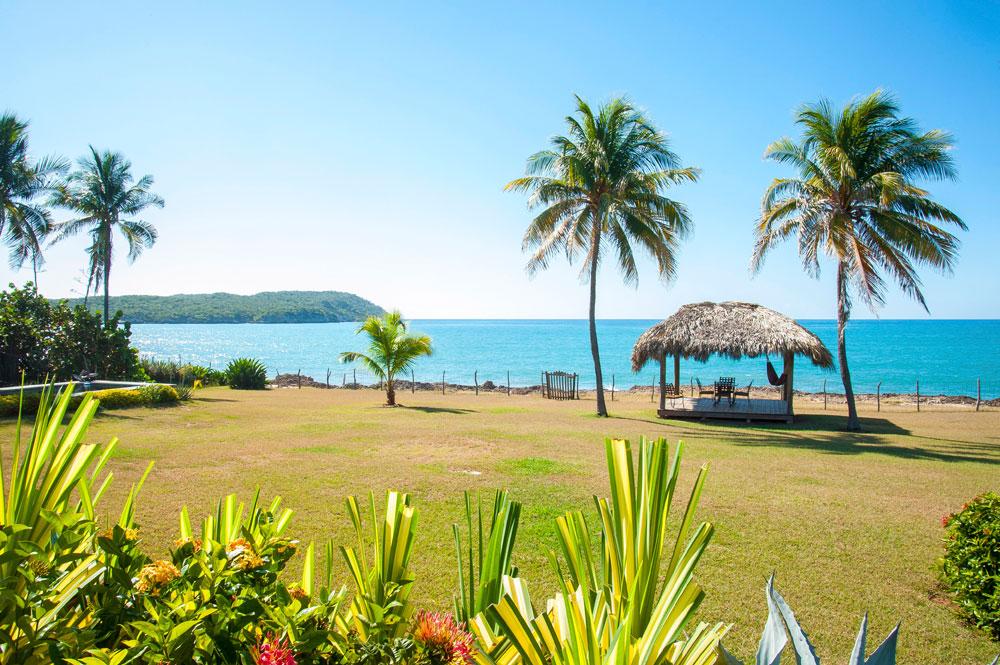 Driftwood_Treasure_Beach_Jamaica_02.jpg