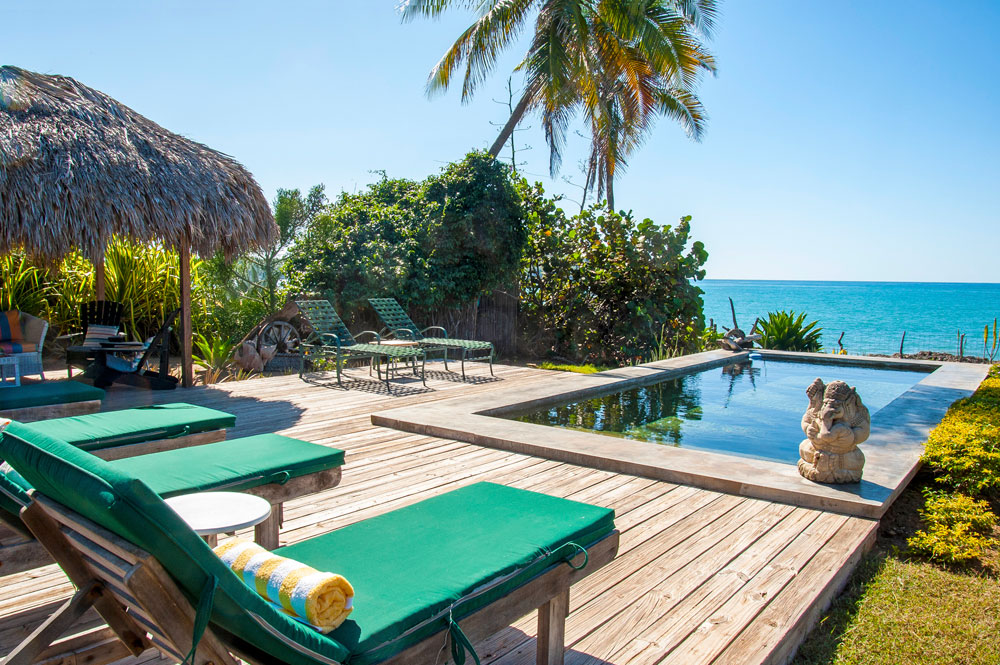 Driftwood_Treasure_Beach_Jamaica_03.jpg