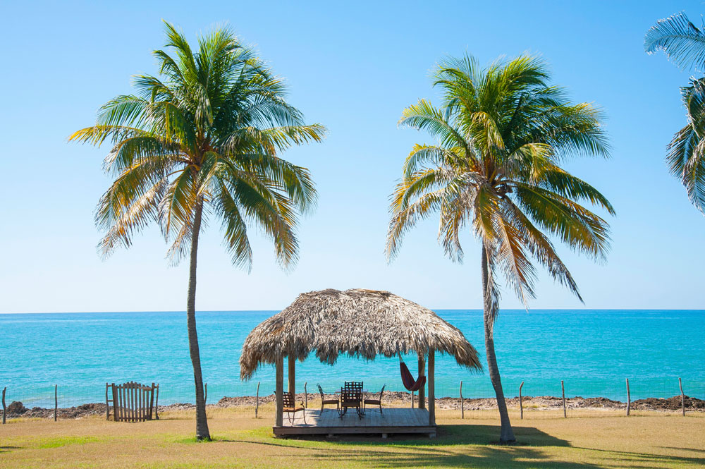 Driftwood_Treasure_Beach_Jamaica_30.jpg
