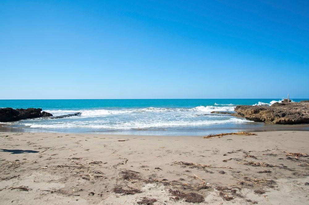 Driftwood_Treasure_Beach_Jamaica_35.jpg