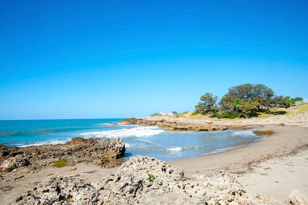 Driftwood_Treasure_Beach_Jamaica_34.jpg