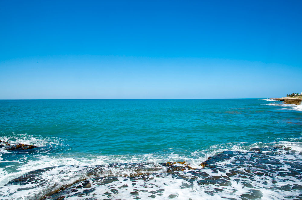Driftwood_Treasure_Beach_Jamaica_37.jpg