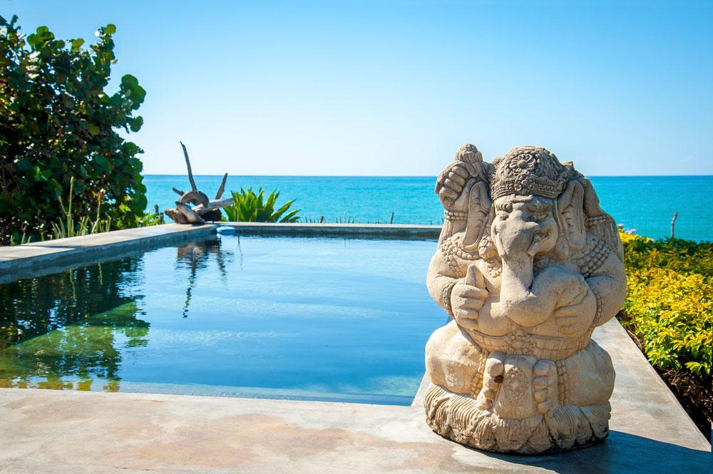 Driftwood_Treasure_Beach_Jamaica_40.jpg