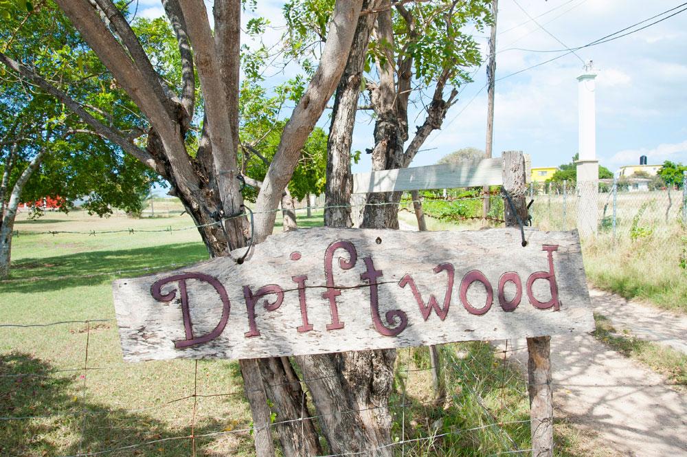 Driftwood_Treasure_Beach_Jamaica_44.jpg