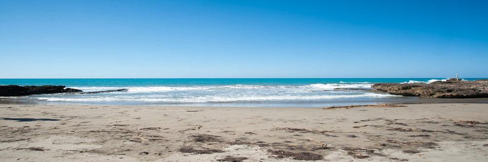 THJA_Driftwood_2017_Stretch_Beach.jpg