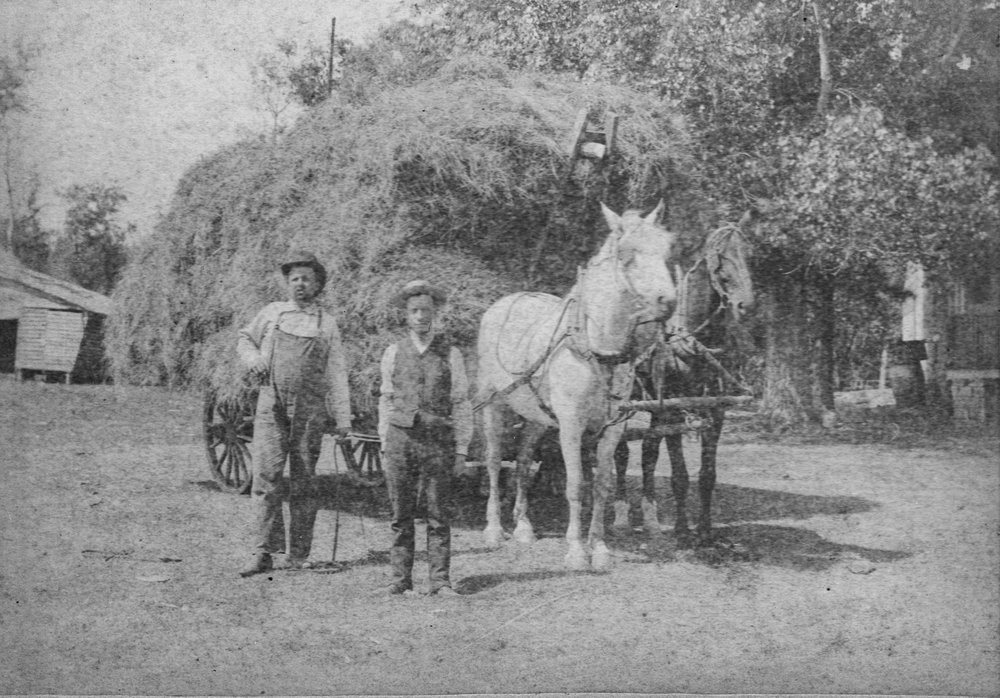 J. J. Britt and his son transporting hay around 1900.