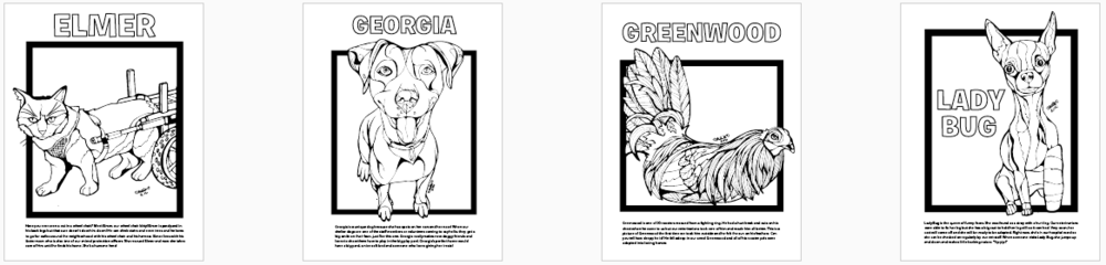 By Staff And Volunteers Of Austin Animal Center