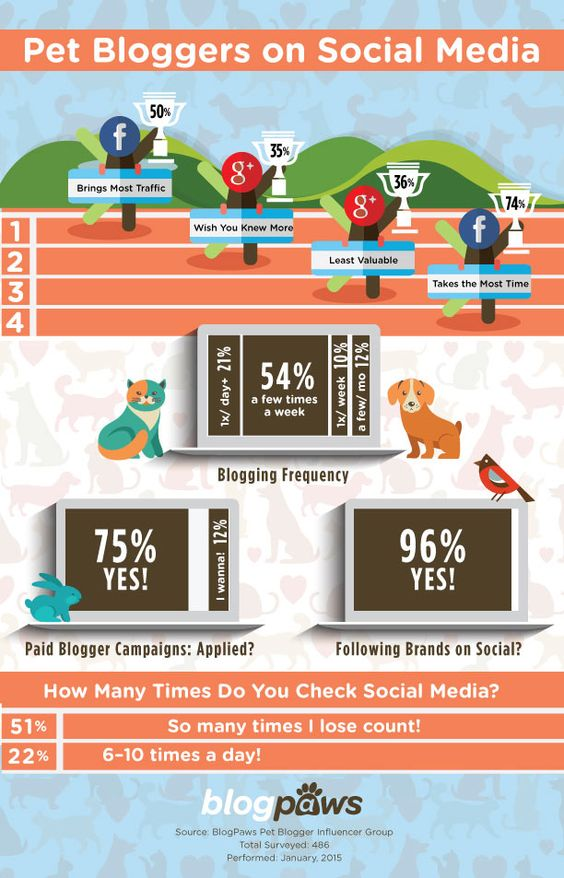 bloggers inforgraphic