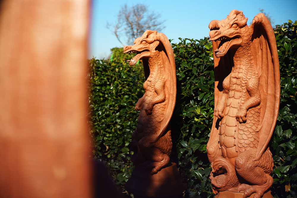 Dragons_f2-8.jpg