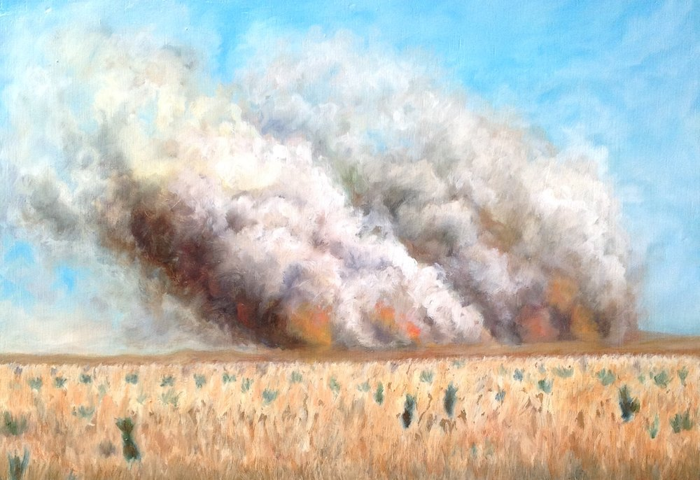Burning Prairie oil on panel 9x13 2011 .jpg