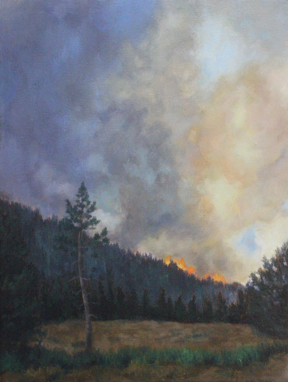 Hillside Flames 2013 9x12''.JPG